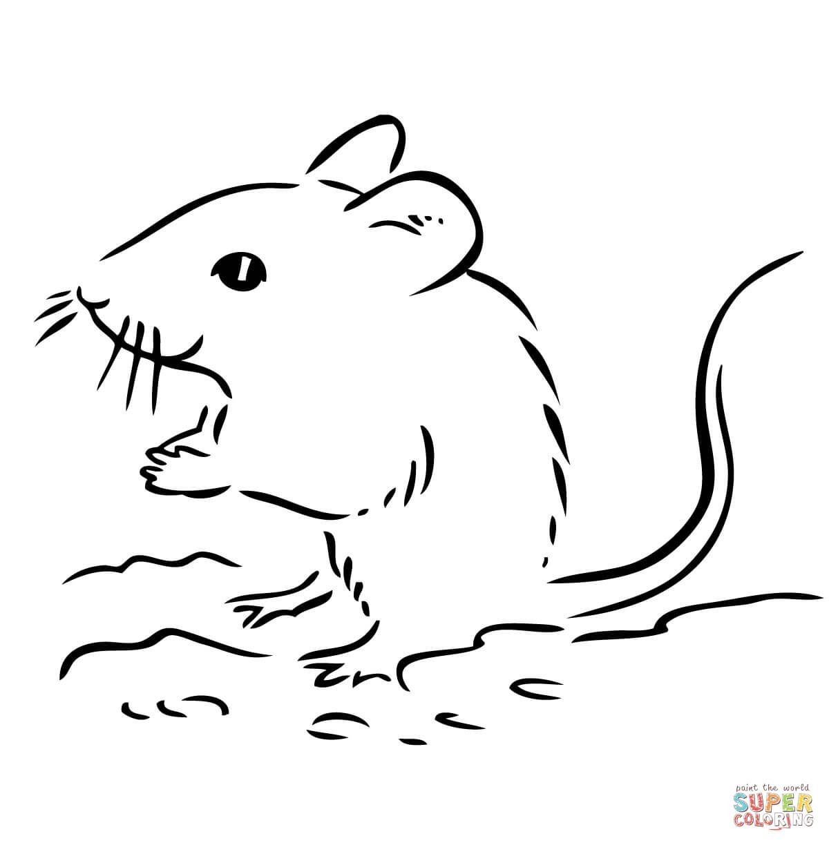 1200x1224 Cute Deer Mouse Coloring