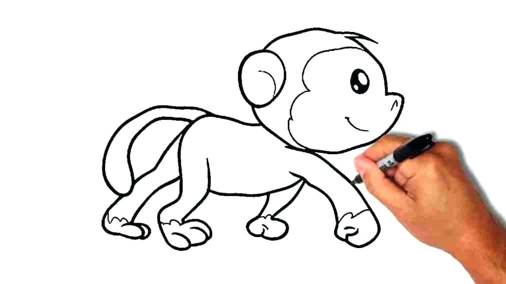 1011x569 How To Draw Monkeys How To Draw A Monkey For Kids Draw So Cute