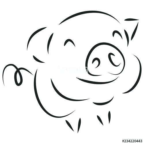 500x500 cute pig drawings piggy drawing pig cute pig drawings step
