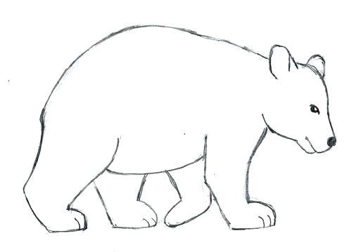 513x359 Bear Draw Cute Bear Drawing Gif