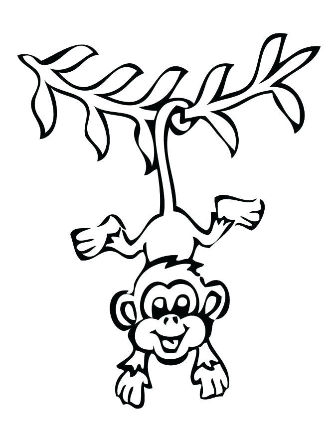670x867 Monkey Drawing Cute