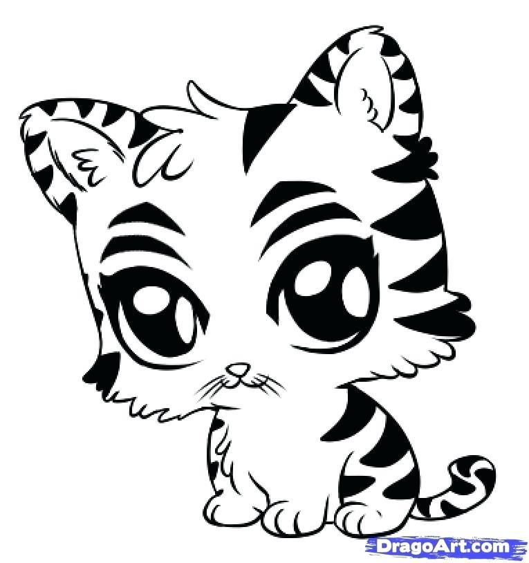 765x814 draw cute animals cartoon animals drawing draw so cute animals