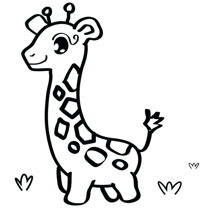 Cute Drawing Pictures Of Animals Free Download Best Cute Drawing
