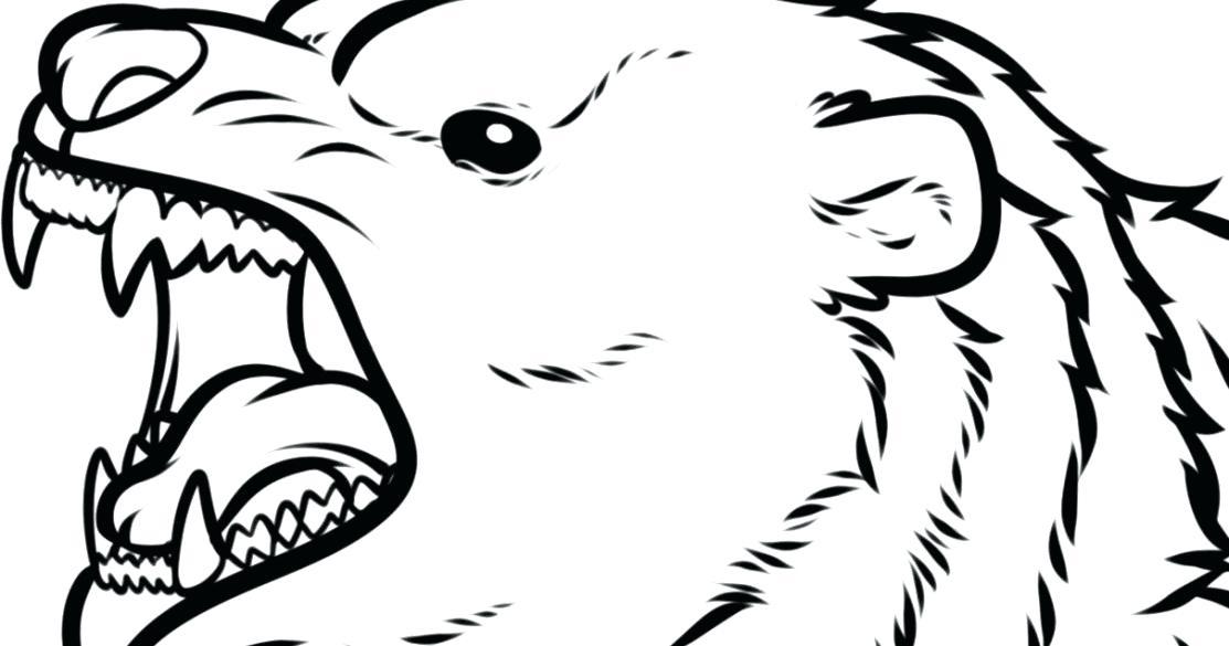 1113x585 bear face drawing bear face drawing google search cute bear face