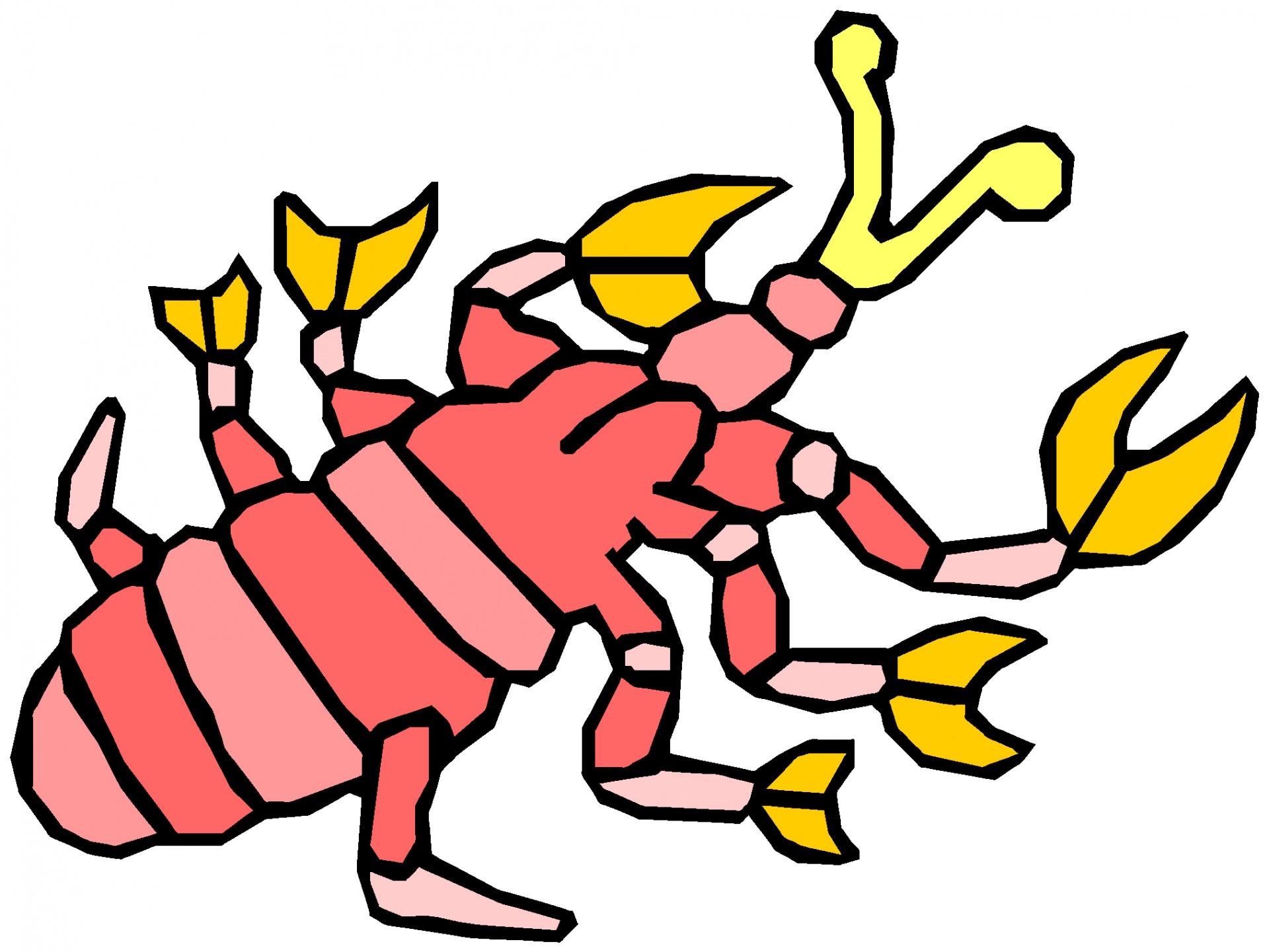 1920x1441 Cute Bug Drawings Funny Big Bash Draw A Life Botanical Barcelona