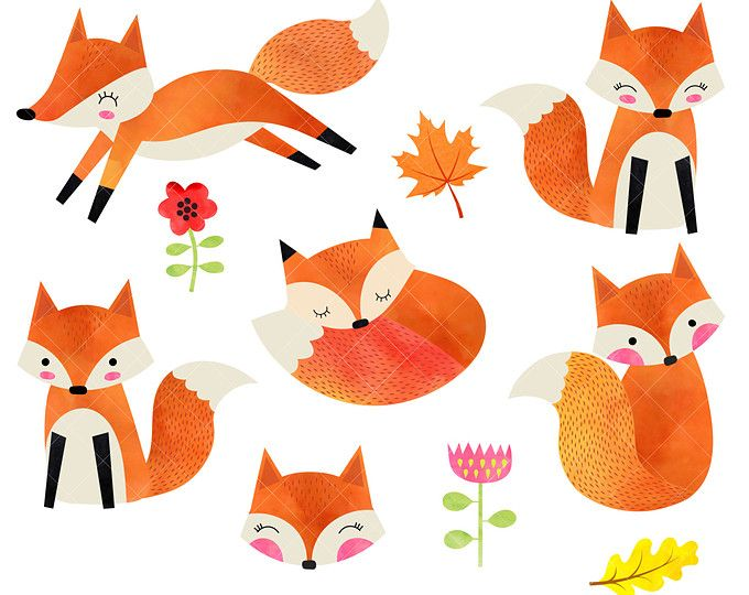 680x540 Watercolor Foxes Clipart Baby Woodland Animals