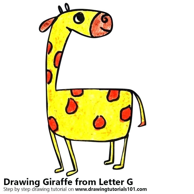 800x800 drawing of giraffe giraffe drawing gallery cute giraffe drawing