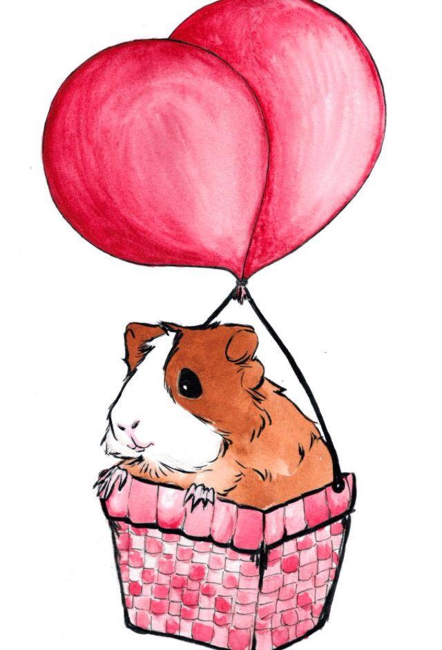 640x942 guinea pig in a hot air balloon cute guinea pigs, cute guinea