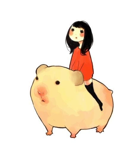 400x480 Watcha Doin Nothin, Just Riding A Guinea Pig Guinea Pigs