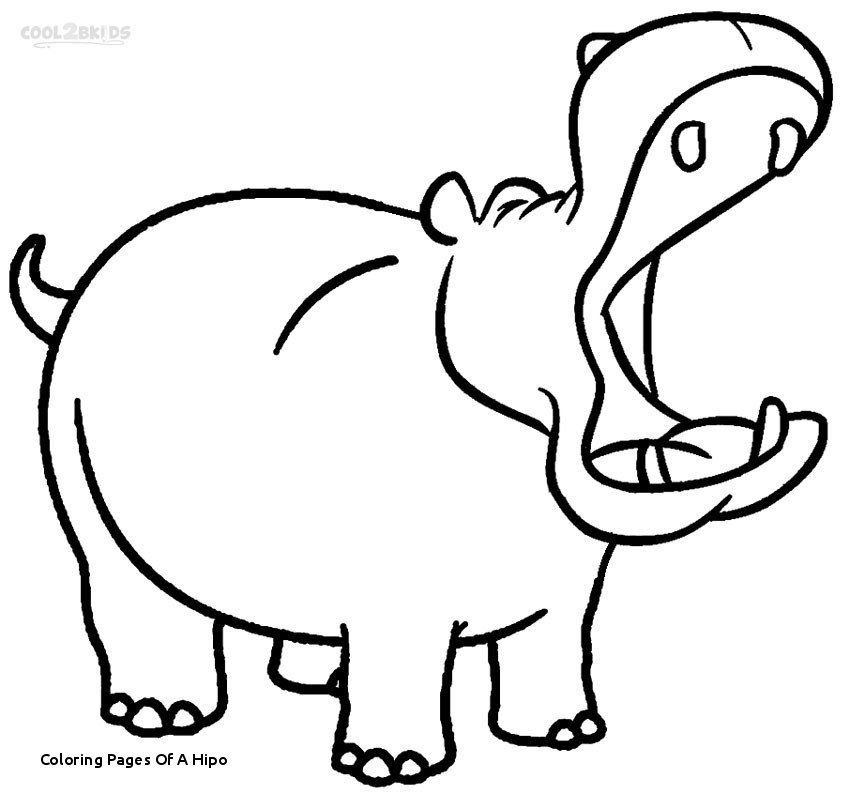 Cute Hippo Drawing | Free download on ClipArtMag