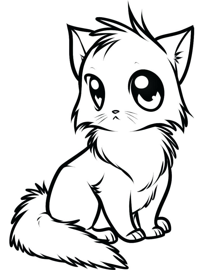 766x1024 Easy Kitten Drawing