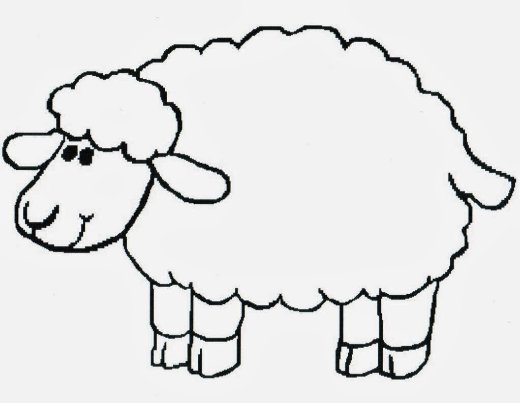 1023x793 drawing of lamb simple lamb drawing at getdrawings free