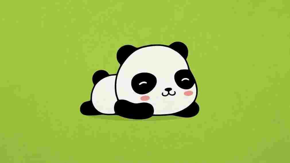 1011x569 Cute Panda Bear Drawing
