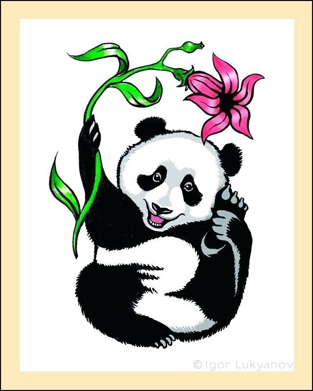 640x800 drawing of panda bear ideas about panda drawing on cute panda clip