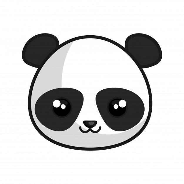 626x626 Panda Vectors, Photos And Free Download