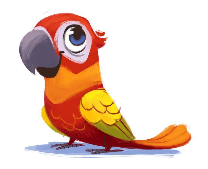 Cute Parrot Drawing