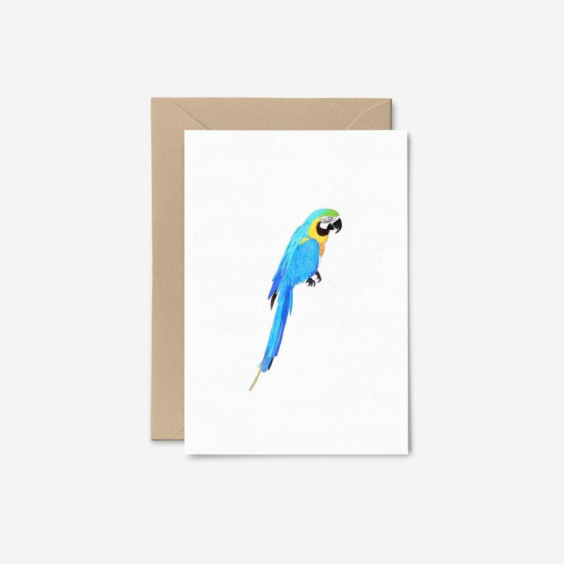 794x794 parrot card tropical bird card macaw card bird thank you etsy