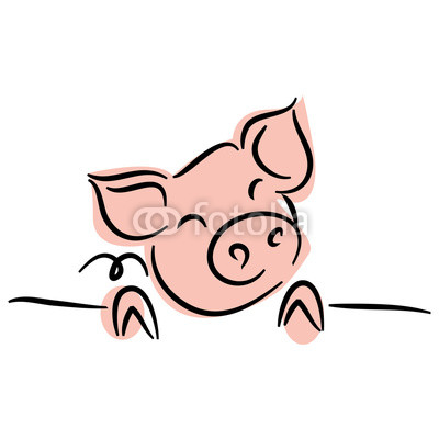 400x400 Drawing Of Cute Pig Vector Illustration Simple Concept Zodiac