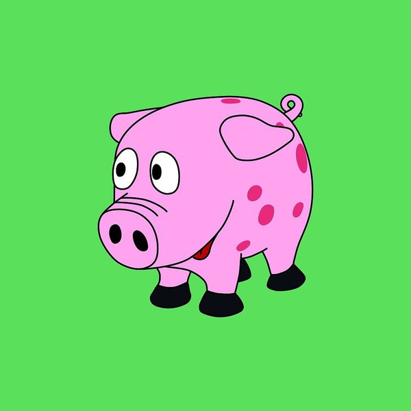 600x600 Cute Pig Drawings Fine Art America