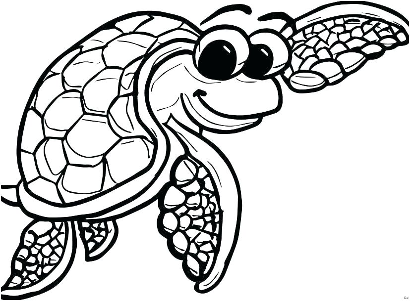 Cute Sea Turtle Drawing | Free download on ClipArtMag