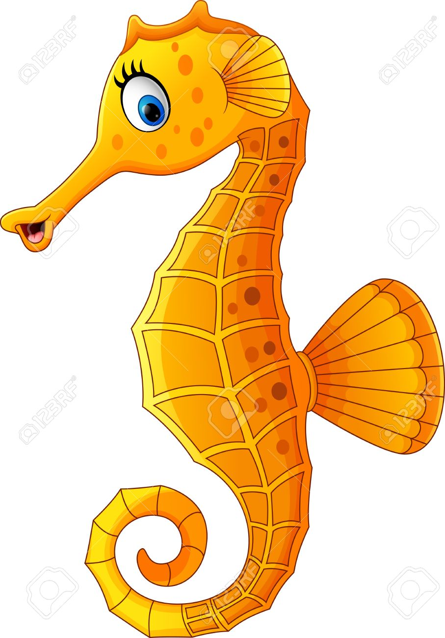 907x1300 Cartoon Seahorse Step