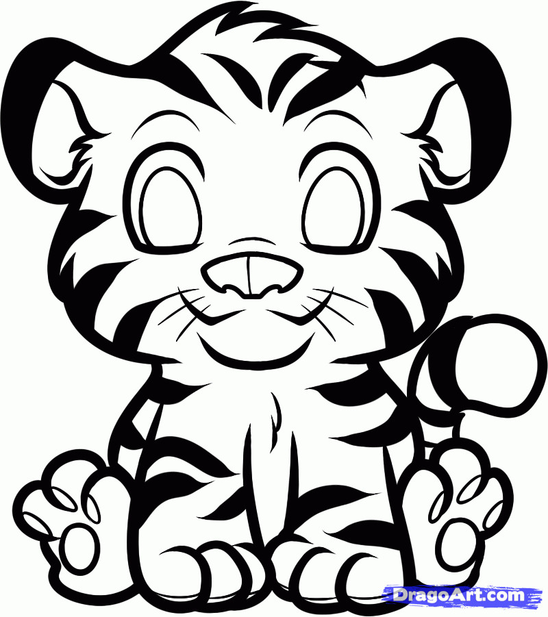 800x901 How To Draw A Cute Tiger How To Draw Cartoon Tigers Draw Alimy Us