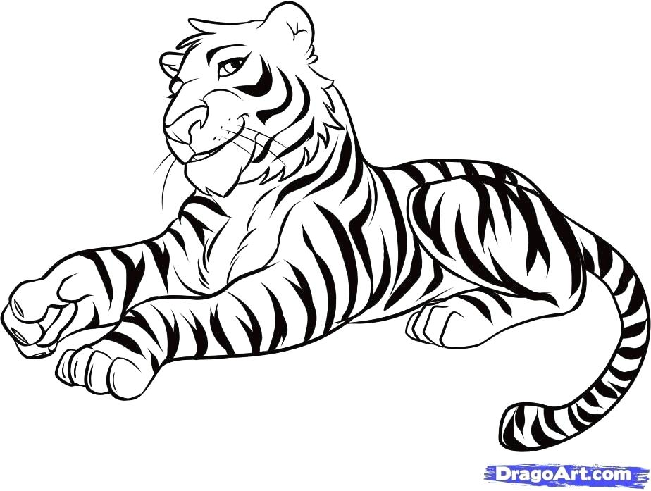 924x697 tiger drawing easy how to draw a tiger cute tiger drawing easy