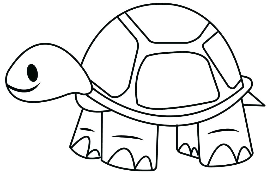 1024x668 easy turtle drawing turtle drawings cute easy turtle drawings info