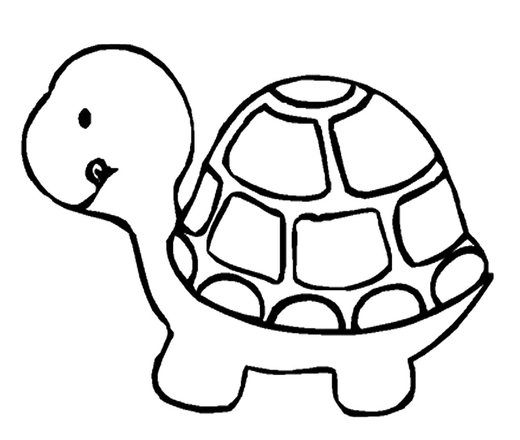 1024x867 Huge Collection Of 'cartoon Turtle Drawing' Download More Than