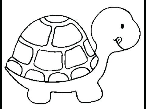 480x360 Turtle Drawing Turtle Drawing Python Code Hoteles