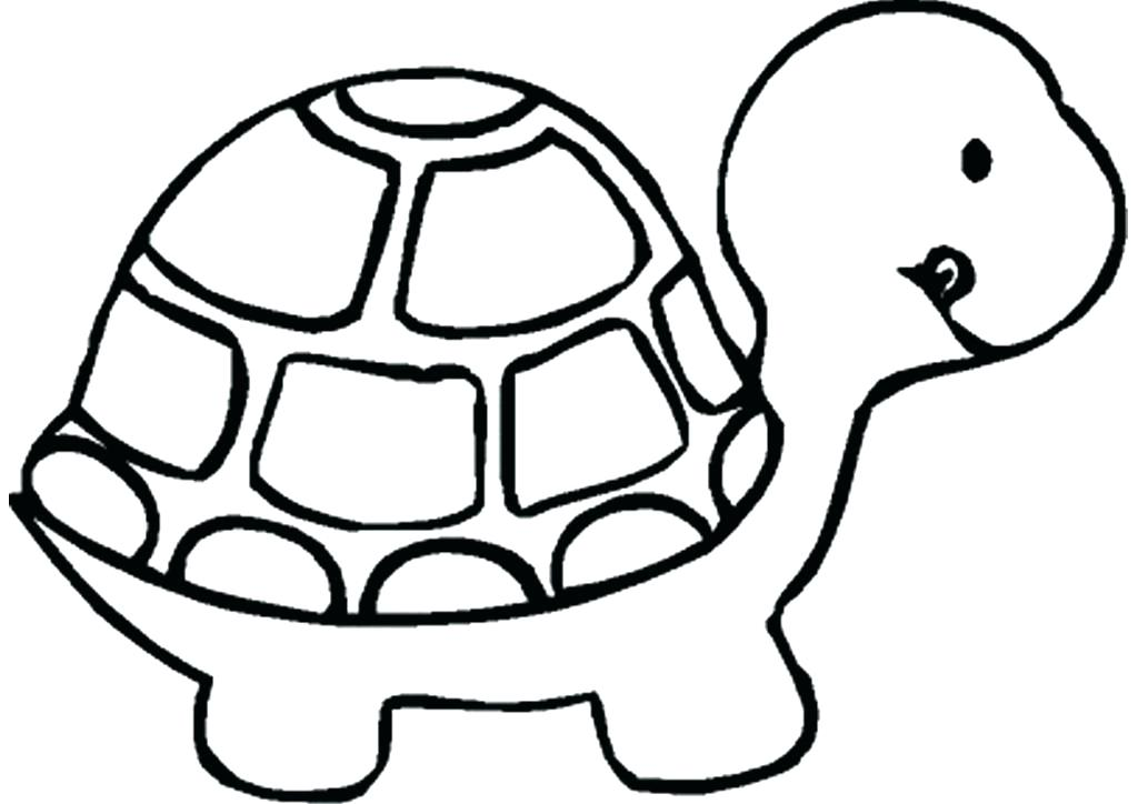 1024x724 turtle drawings turtle sketches turtle tattoo ideas for guys