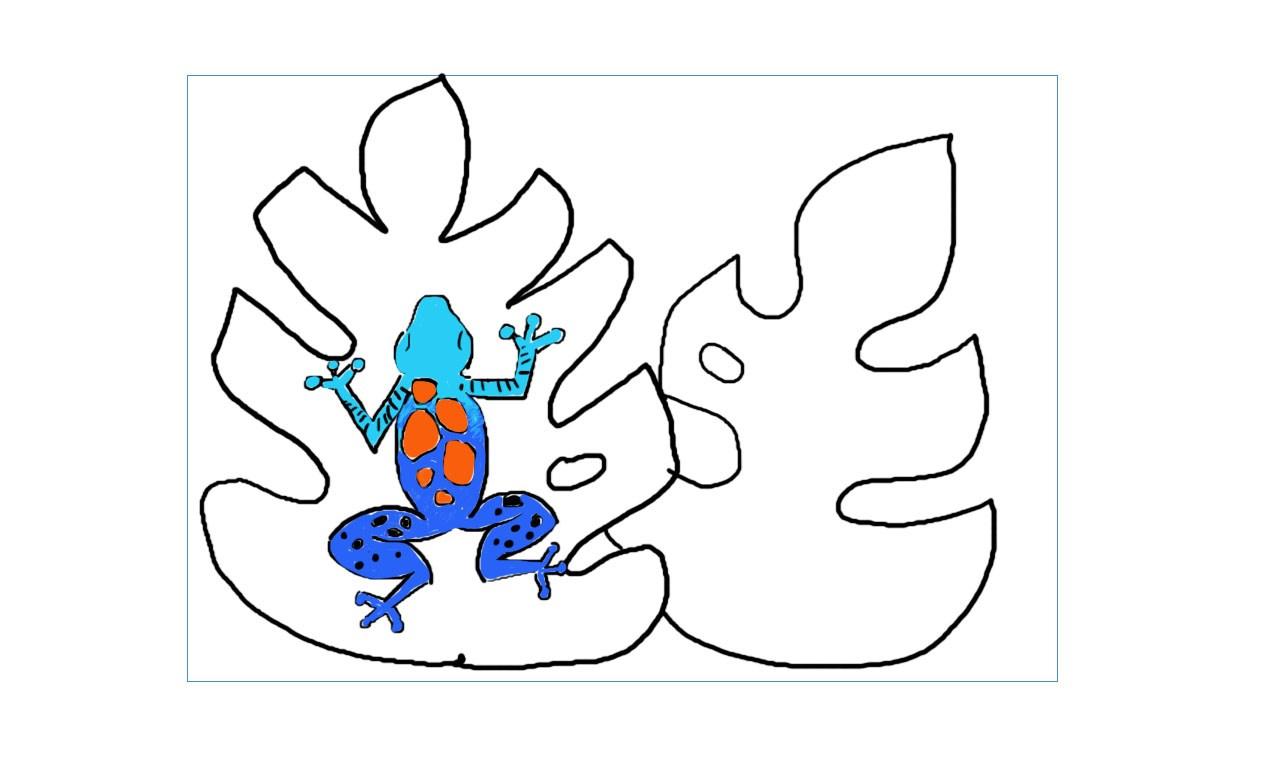 1280x762 Cycle Week Rainforest Drawings
