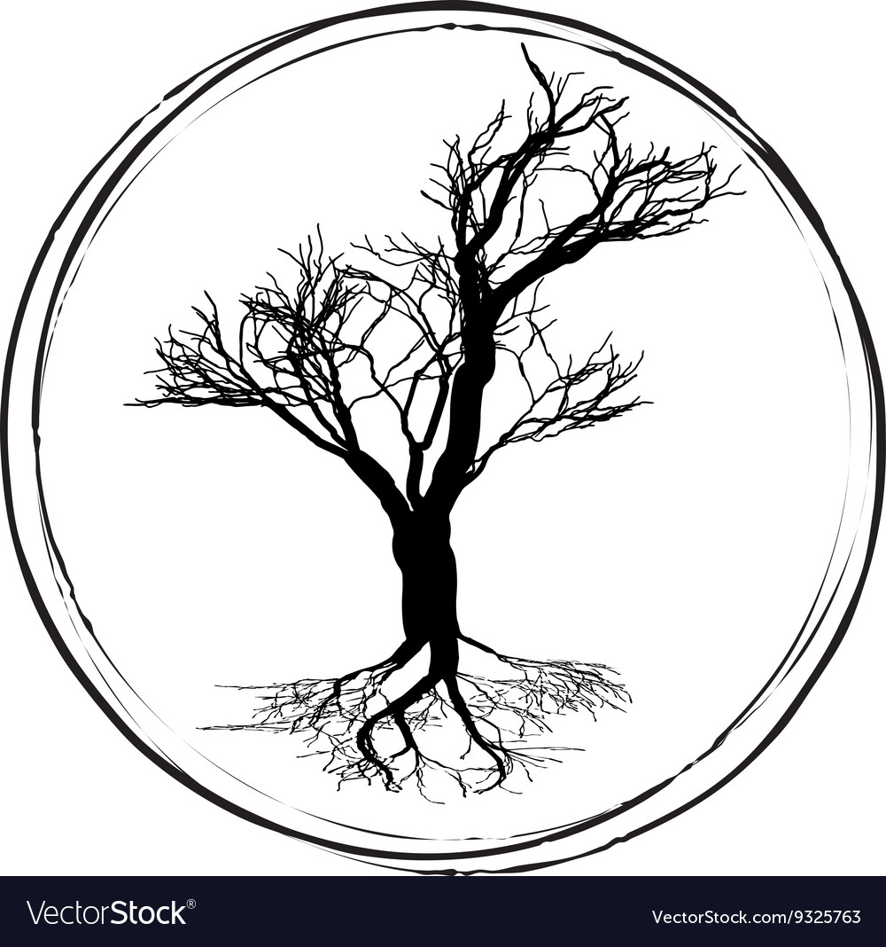 1000x1068 huge collection of 'deciduous tree drawing' download more than