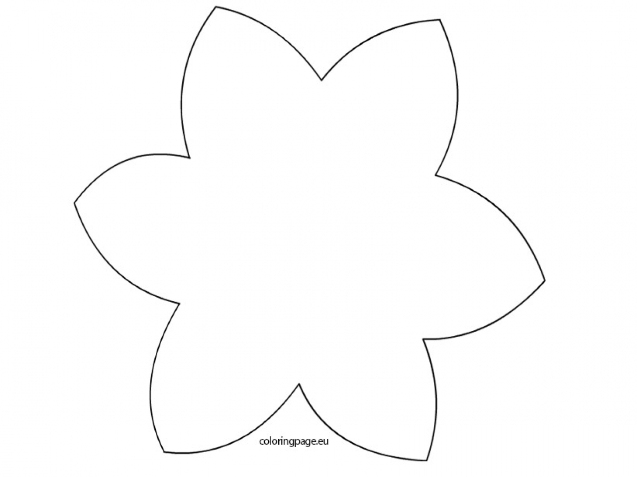 1280x960 daffodil template to print daffodil drawing outline