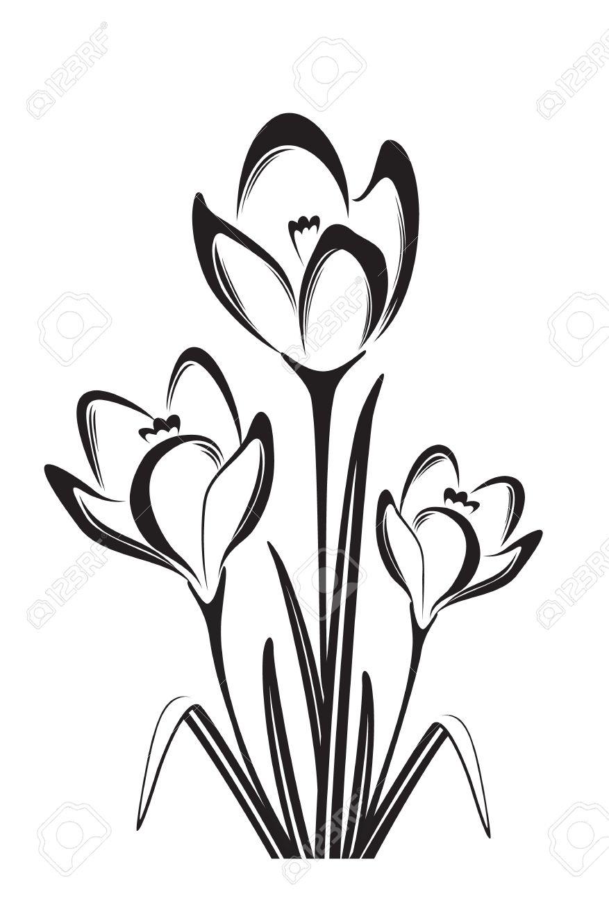 877x1300 spring flower drawing spring flower drawing at getdrawings free