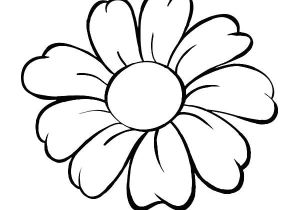 300x210 Easy Drawing Of Daisy Flower How To Draw A Realistic Daisy