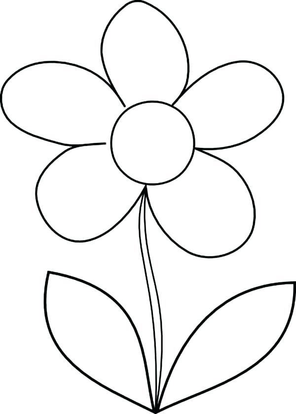 600x840 Flower To Draw How To Draw Daisy Flower Coloring