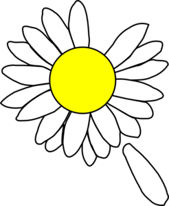 246x299 Petal Drawing Daisy, Picture