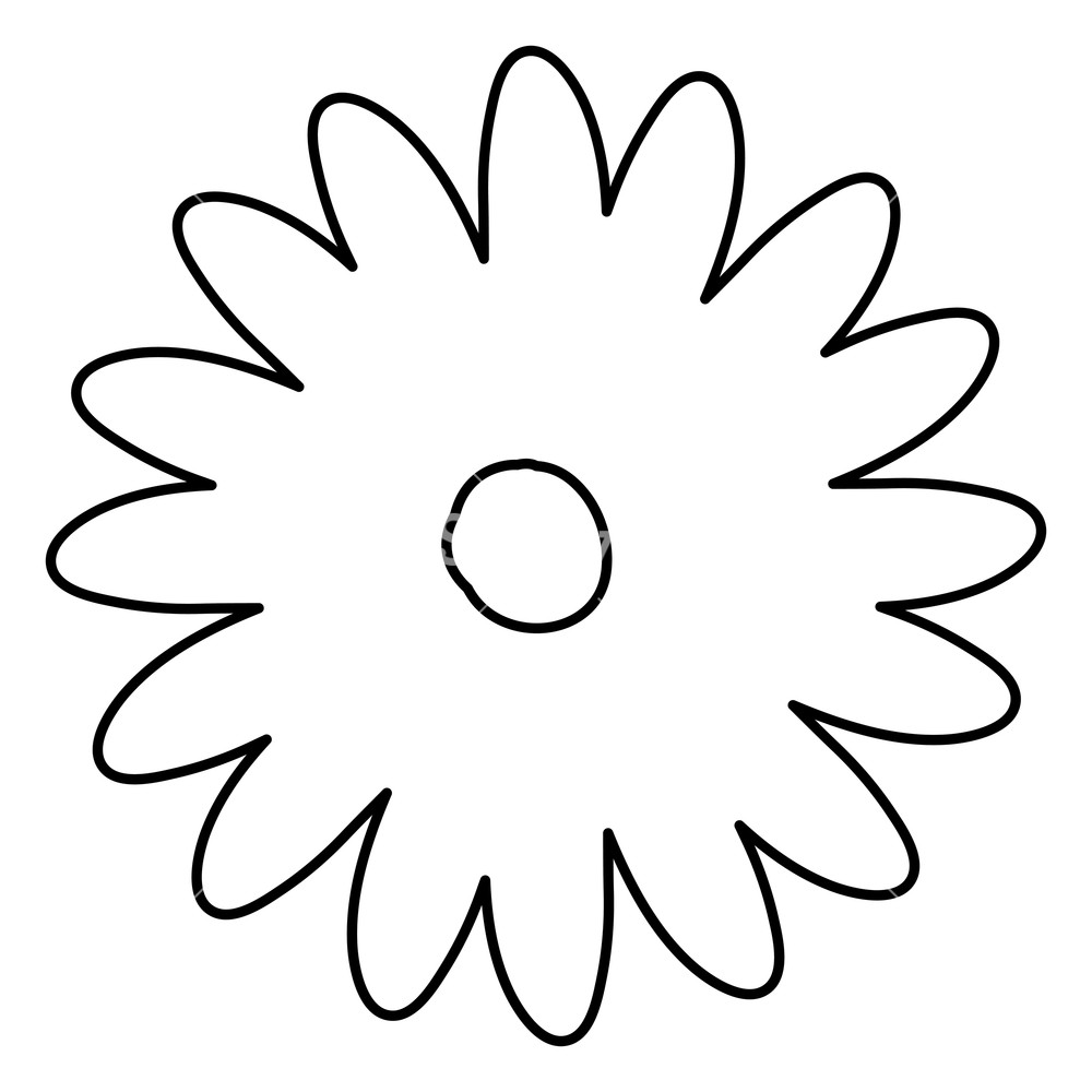 1000x1000 Sketch Contour Of Hand Drawing Daisy Flower With Several Petals