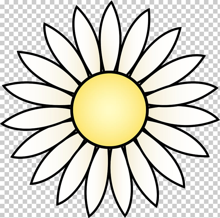 728x722 Common Sunflower Drawing White Black Transparent Daisy S Png