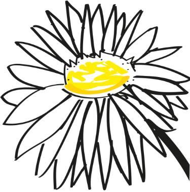 375x379 Daisy Drawing