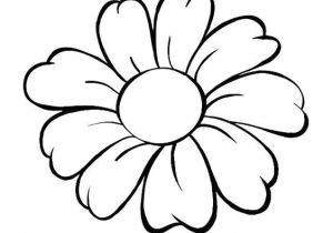300x210 Drawing Daisy Flowers Flower Drawing Easy Flowers Drawingchallenge