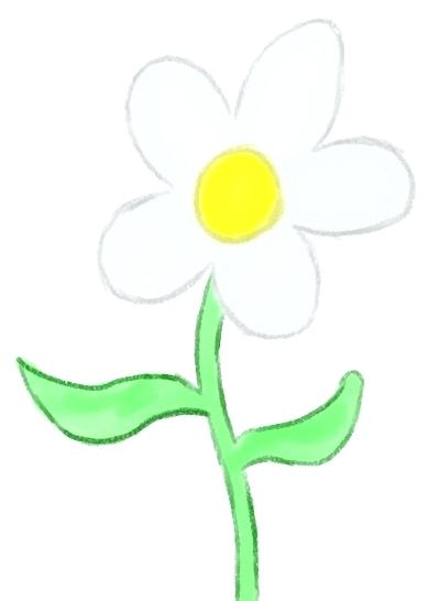 400x546 how to draw a perfect flower flower outline draw perfect flower