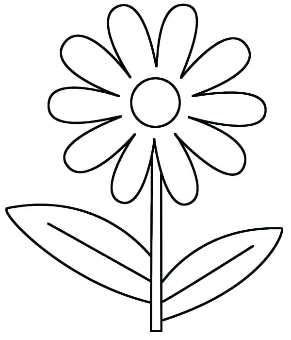 600x700 Daisy Coloring