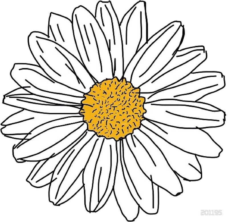 800x781 Daisy' Sticker