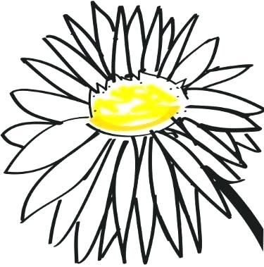 375x379 Daisy Drawing Daisy Ii Daisy Drawing Simple