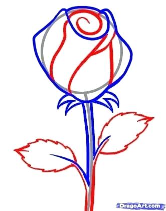331x421 Easy Drawing Roses Simple Rose Drawing Flowers Easy Drawing Images