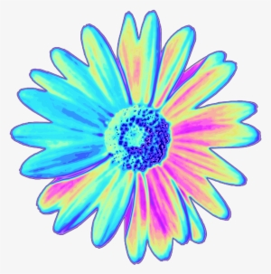 300x303 Flowers Tumblr Png Images Png Cliparts Free Download On Seekpng