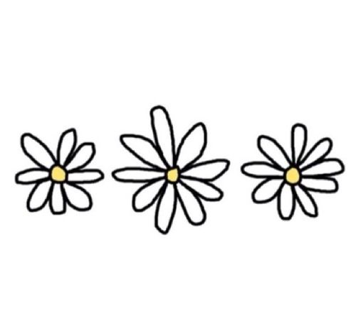 500x453 Flowers Transparent Stuffffff In Tumblr Transparents