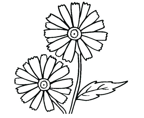 585x478 Flower Coloring Pages Printable Free Daisy Flower Coloring Pages